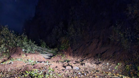 Mudslide shuts down SR 106 in Mason County