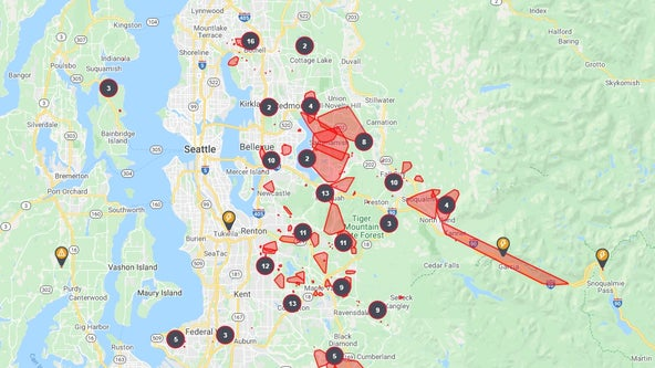 Tens of thousands lose power amid widespread outages