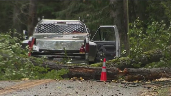 High wind warning in effect for multiple north Puget Sound counties