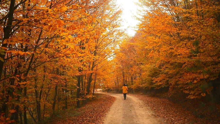 Autumn views from Kurugol Nature Park