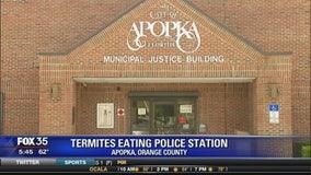 Termites eating Apopka police station
