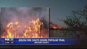 Wildfires across Florida