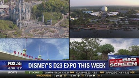 Disney's D23 Expo this week