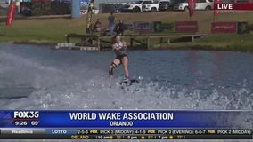 David Does It: World Wake Association