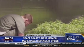 Space Coast's first medical marijuana dispensary opens