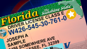 Reminder: You must have a 'REAL ID,' or gold star on your license, to fly by October 2020