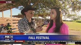 David Does It: Fall Festival