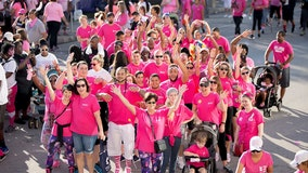 Making Strides Against Breast Cancer Gainesville