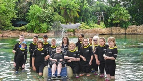192 children with disabilities, illnesses treated to day with dolphins at Discovery Cove in Orlando