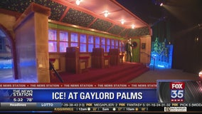 ICE! now open at Gaylord Palms Resort