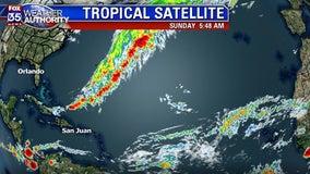 Tracking the Tropics: November 10