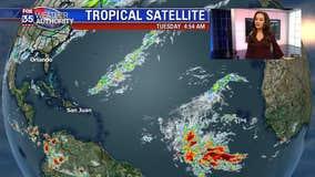 Tracking the Tropics: November 12