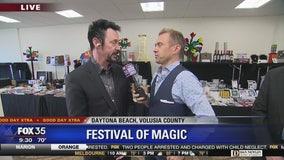 David Does It: Festival of Magic