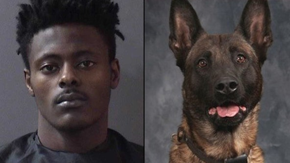 "Man accused of fatally shooting K-9 said ""(expletive) that dog"" multiple times after arrest, officer says"