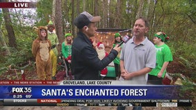 David Does It: Santa's Enchanted Forest