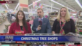 David Does It: Christmas Tree Shops