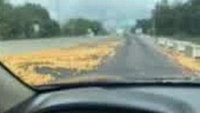 Grapefruits scattered over Florida Turnpike, multiple northbound lanes blocked