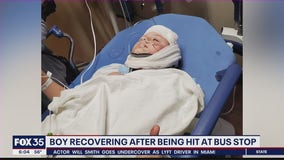 Boy recovering after being hit at school bus stop