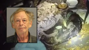 'Skin and bones': Man arrested after severely emaciated dog is found lying in its own feces, deputies say