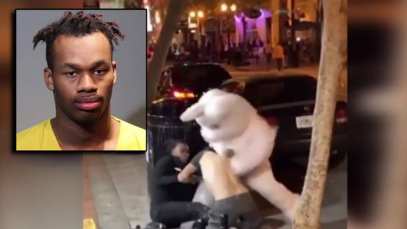 'I'm the Orlando Easter Bunny. Google it': Man in infamous bunny suit facing hit-and-run charges