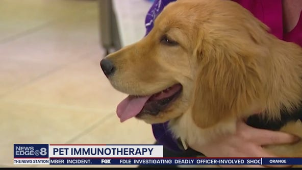 Pet immunotherapy
