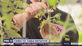 Student learning about farm-to-table initiatives