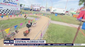 David Does It: Central Florida Fair