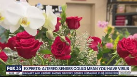 Altered senses reported by some coronavirus patients