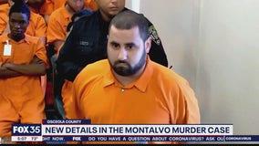 New details in the Nicole Montalvo murder case