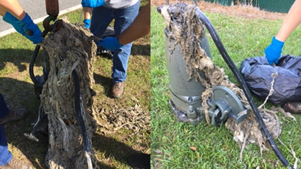 Florida city reminds residents to only flush toilet paper, human waste to avoid damaging sewer systems