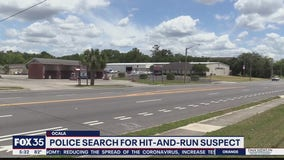 Police search for suspect in Ocala hit and run