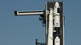 SpaceX's Crew Dragon spacecraft raised into position ahead of upcoming manned mission