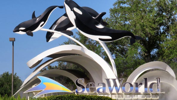SeaWorld stops temperature checks, reduces social distancing