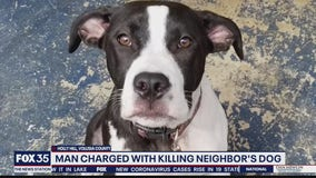 Man charged with killing neighbor's dog