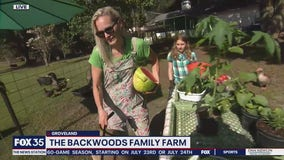 David Does It: The Backwoods Family Farm