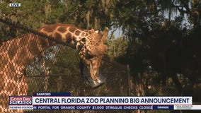David Does It: Central Florida Zoo