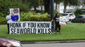 'Tell them to stay closed': PETA protests outside of SeaWorld Orlando upon reopening