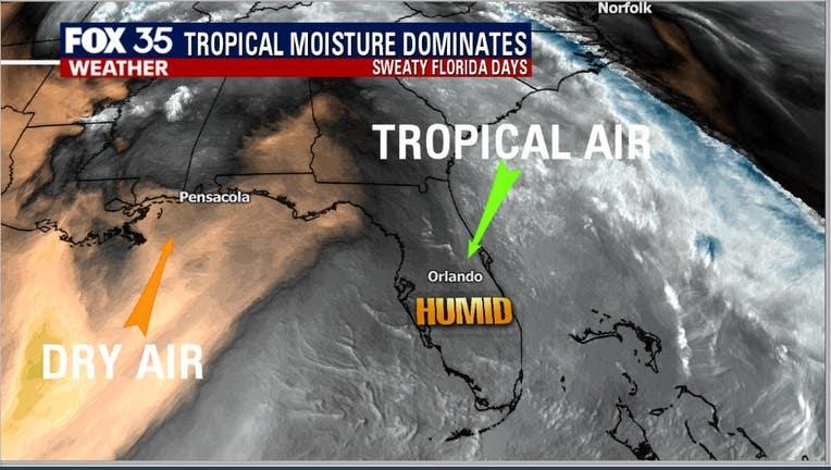 tropical-airmass.jpg