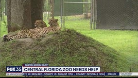 Central Florida Zoo in need of help
