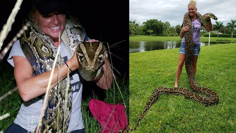 python hunter for web