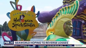 SeaWorld hoping to reverse losses