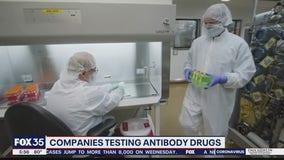 Companies testing antibody drugs