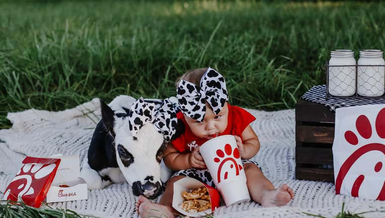 brae and bougie chick fil a cow photoshoot (2)