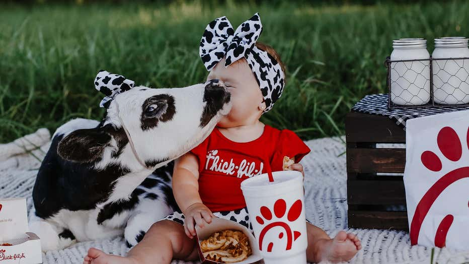 brae-and-bougie-chick-fil-a-cow-photoshoot-4.jpg