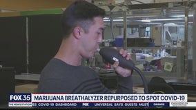 Marijuana breathalyzer repurposed to spot COVID-19