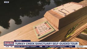 David Does It: Turkey Creek Sanctuary self-guided tour