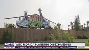 Wild Florida panning on expanding