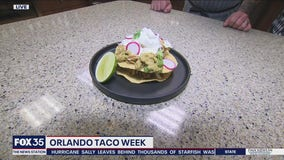 David Does It: Orlando Taco Week