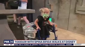 Toddler with spina bifida walk at Disney World