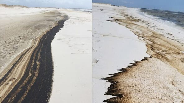 Oil washes ashore on Florida beach weeks after Hurricane Sally
